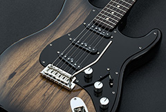 Gilmour Inspired Black Strat Parts
